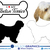 Tibetan Terrier - Dog Breed Decals (Set of 16) - Sizes in Description