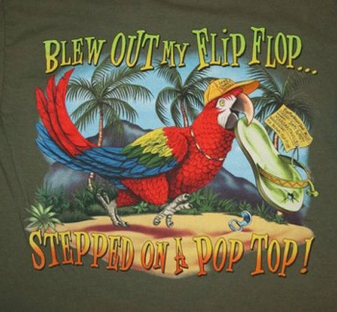 Blew Out My Flip-Flop Cross Stitch Pattern***LOOK***X***INSTANT DOWNLOAD***