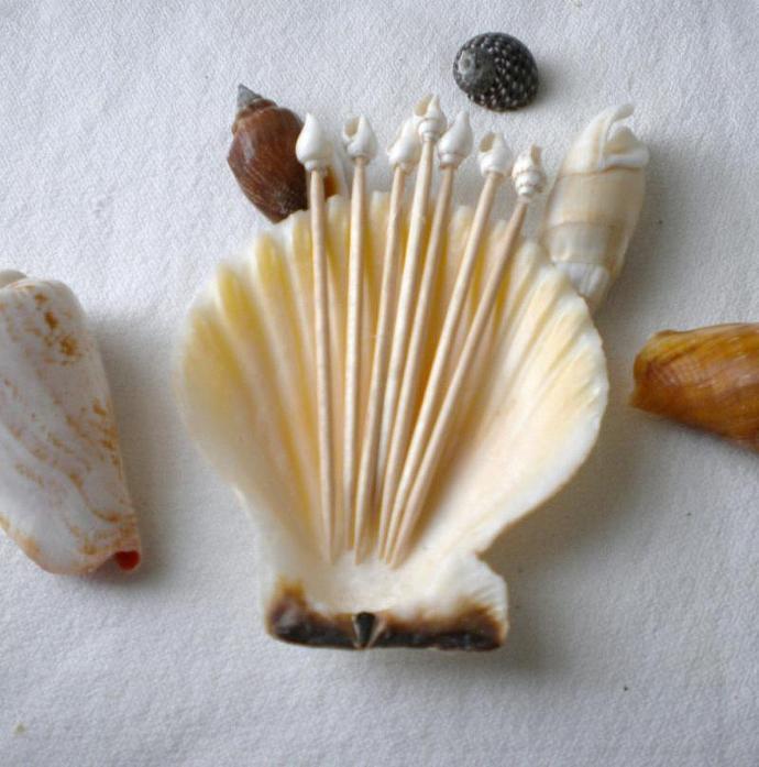 Cocktail toothpicks -  Seashells - Set of 25