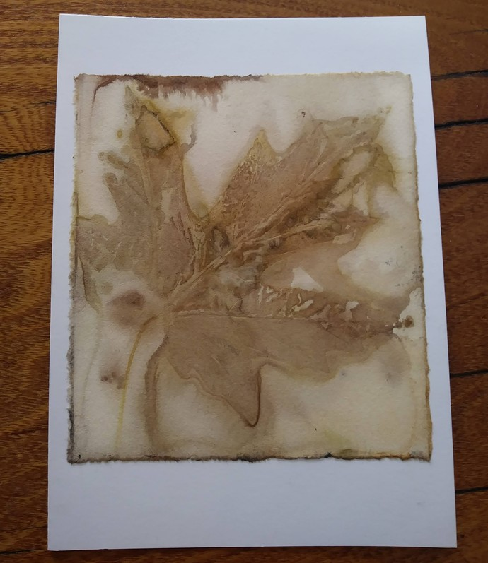 Original Nature Printed 5x7 Card Hand-Dyed Maple Leaf