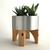 "Mid Century Style ""Sputnik"" Succulent Planter, Eco Friendly Modern Home Decor in"
