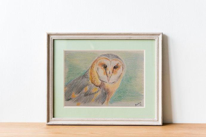 Barn owl color pencil drawing original   bird pencil drawing   woodland animal