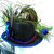 "MINI Top HAT ""Birdie"" Victorian Peacock Irradecent Hatband Peacock, Black"