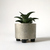 Grey Metal Succulent Planter, Small Planter Made from Weathered Metal Pipe, Made