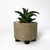 Small Rustic Bronze Tone Succulent Planter Made from Recycled Metal Pipe, Made