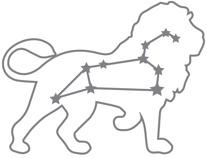 Rising Stars - Leo - Modern Living Series - Etched Decal - For Shower Doors,