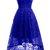 Lace Royal Blue/Burgundy Short Party Dress, Elegant Short Homecoming Dress,