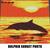 Dolphin Jumping Sunset Photo Art crochet graphgan blanket pattern; graphgan