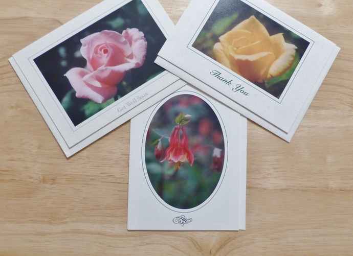 Photo greeting cards, original photography, Floral cards, Roses cards, Columbine
