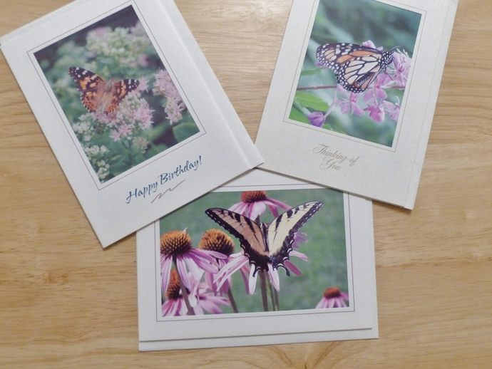 Photo greeting cards, original photography, Butterflies cards, Monarch card,