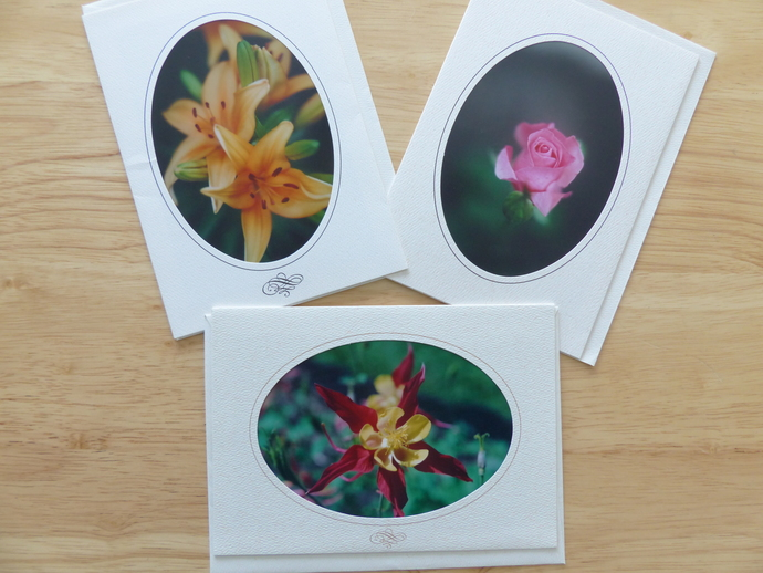 Photo greeting cards, original photography, Floral card, Roses card, Lilies