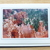 Photo greeting cards, original photography, Bryce Canyon scenery, nature cards,