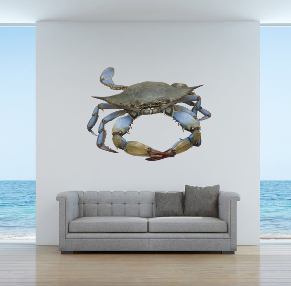 "Blue Crab 9 - Wall Decal - 28"" tall x 37.25"" wide"