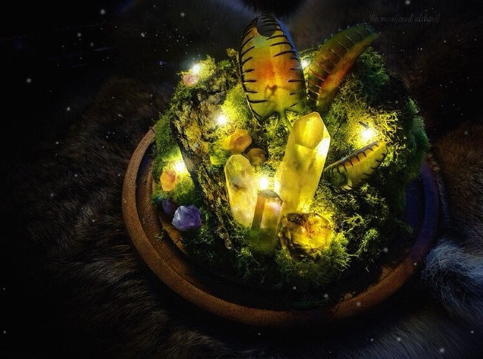 Crystal forest terrarium light