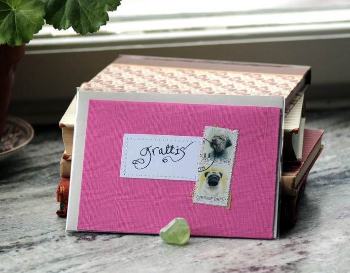 Grattis! Gratulationskort - Pink Congratulations card in Swedish with dogs
