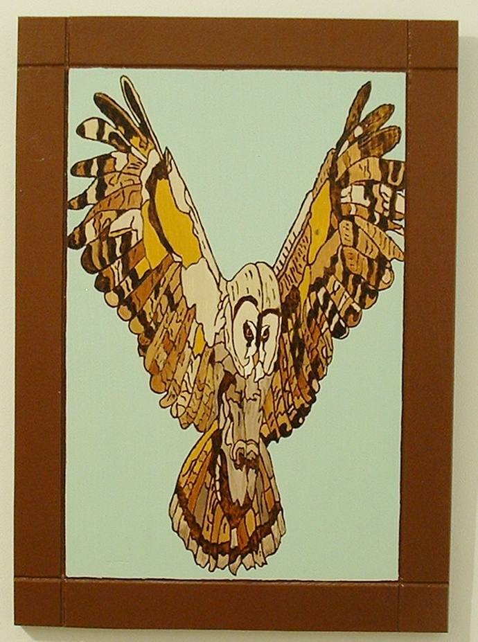 Owl, Wood Wall Art, Pyrography, Wood Burned, Framed Wall Decor