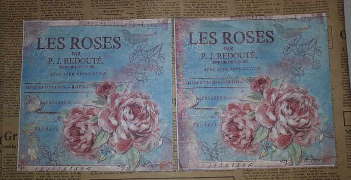 N181 Paper Napkins (Pack of 2) Pink Roses French Writing Flowers Shabby Chic