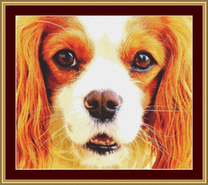 Cavalier Face Cross Stitch Pattern - Instant Digital Downloadable Pattern