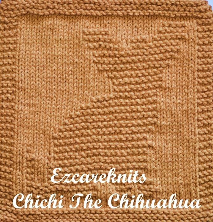 CHICHI THE CHIHUAHUA