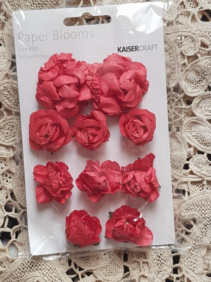 Kaisercraft blooms (10)
