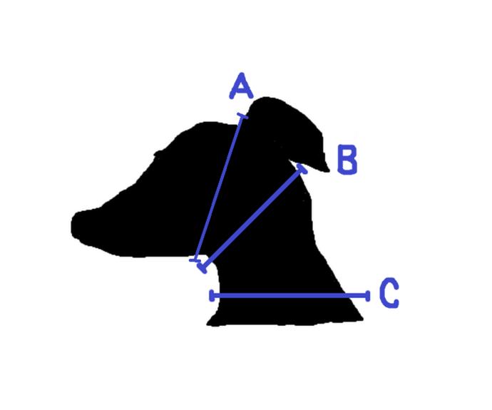 Meilin Silk Brocade Dog Collar