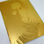 BH 2 Vol.19 (LEON) Special Edition Matte Metallic Gold Cover - BIOHAZARD 2 Hong
