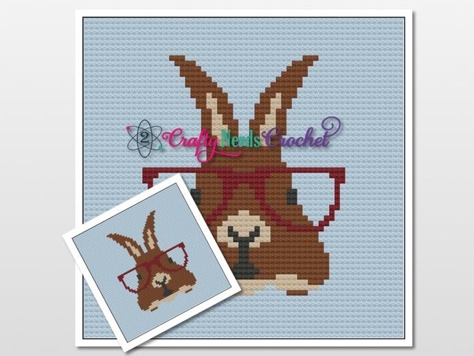 Hipster Bunny Rabbit Pillow Pattern Graph With Single Crochet Written