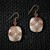 Crazy Lace Agate Dangle Earrings; Diamond Design Series (E109)