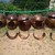 Coconut Shell Pets/Birds Nest/Cave 100% Natural Eco friendly handmade product