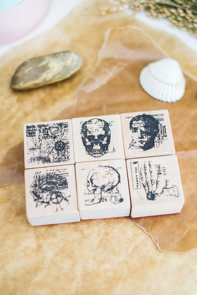 Anatomy series: Full set of 6 - decorative wooden planner stamp suitable for