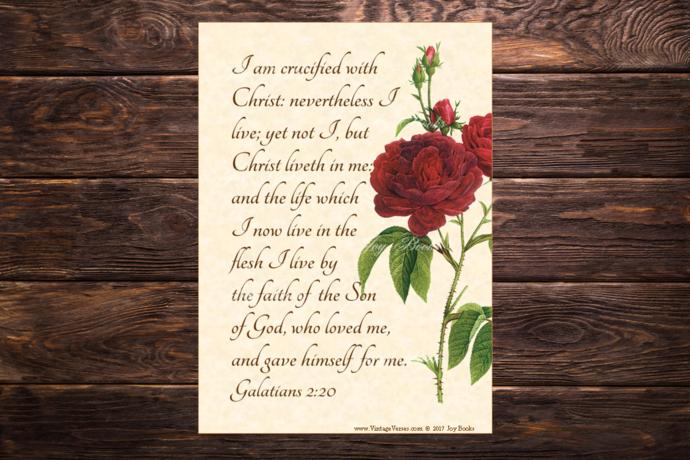 CHRIST IN ME Galatians 2:20 Vintage Verses DIY Inspirational Wall Art Printable
