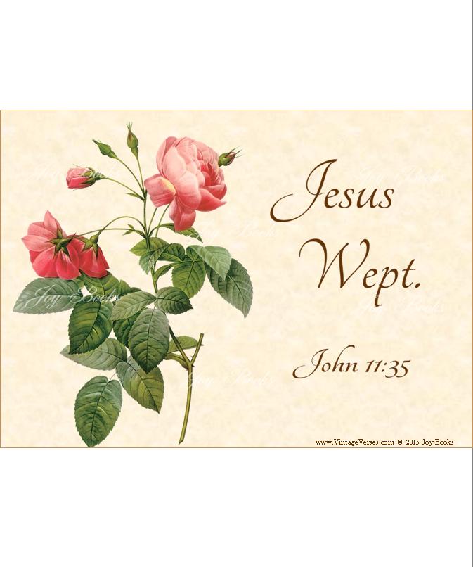 JESUS SORROW John 11:35 Vintage Verses DIY Inspirational Wall Art Printable