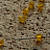 Yellow Chinese Crystal Bicone Beads