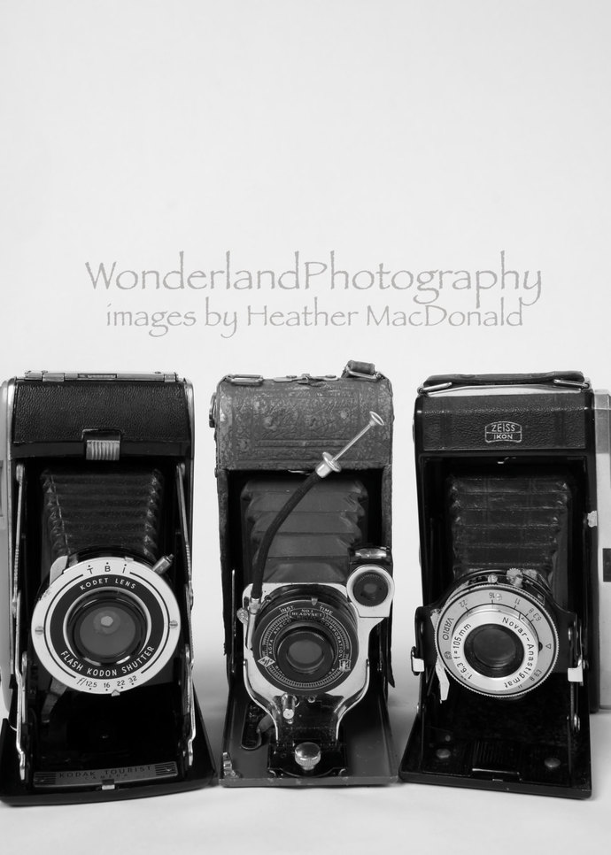 Antique Film Cameras Photograph / Black & White 5x7 Matted Print