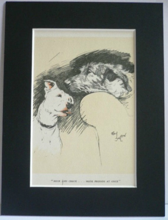 Bull terrier Irish Wolfhound Friends Signed mounted vintage 1928 Cecil Aldin dog
