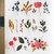 Flowers & Leaves - 5 cm wide washi tape 10m - original design, perfect for