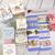 Alice in Wonderland Washi Tape SAMPLER PACK