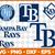 Tampa Bay Rays Svg, Baseball Svg, files for cricut, Rays Svg, Sport Svg, eps,