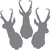 Trio Pronghorn Mounts - The Great Outdoors Series - Etched Decal - For Shower