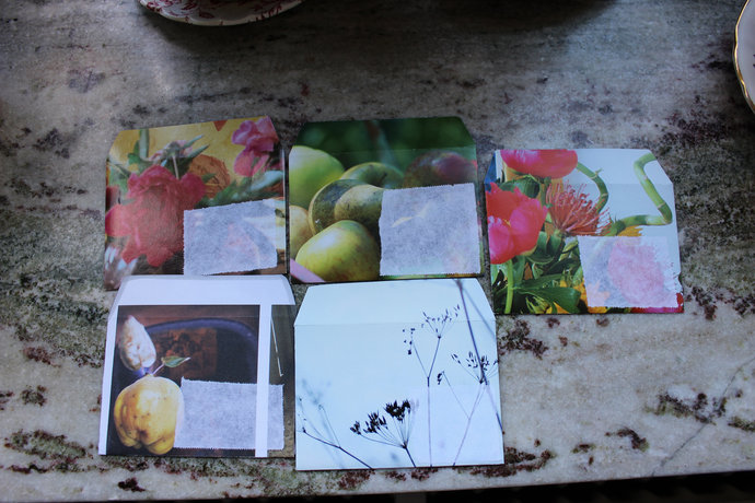 5-pack of Small handmade envelopes with blank card inside Flower Apple Quince