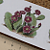 PricklyPear Cactus Ceramic Waterslide Decal D10-37