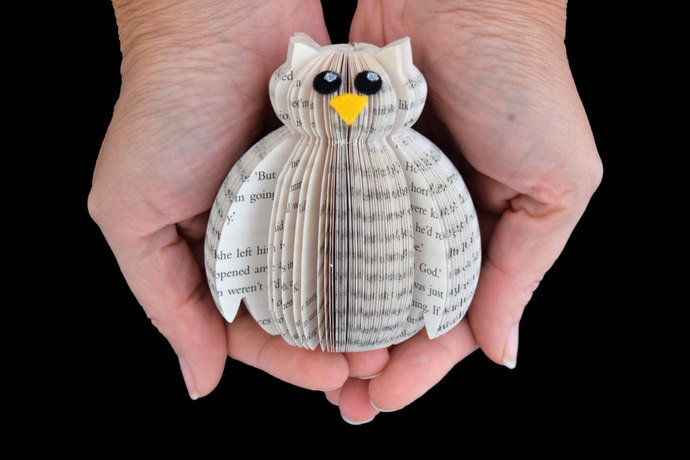 Miniature Book Owl - Book Art -  Presentation Box - Owl gift - owl lover gift -