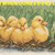 Ugly Duckling Cross Stitch Pattern***LOOK***    ***INSTANT DOWNLOAD***