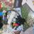 Alice In Wonderland Scrapbook Journaling Cardmaking Inspirational Kit