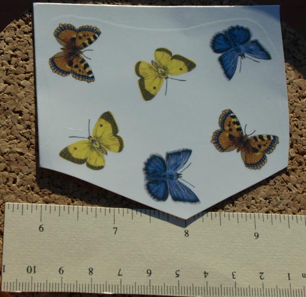 Butterflies Ceramic Waterslide Decals D10-55