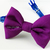 Solid Purple Cat Bow Tie, Slide on, Removable Bow, Pet Accessories