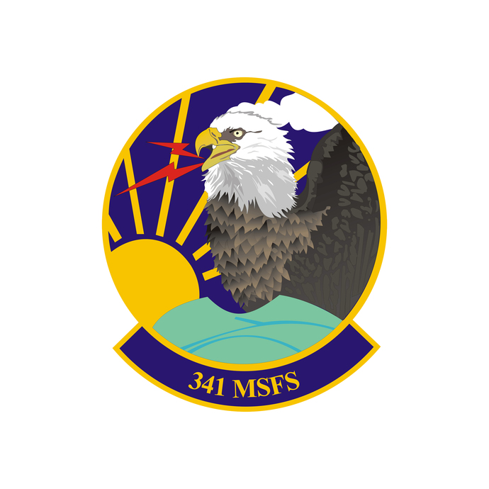 341st Missile Security Forces Squadron Patch - Wall Decal - Variety of Sizes