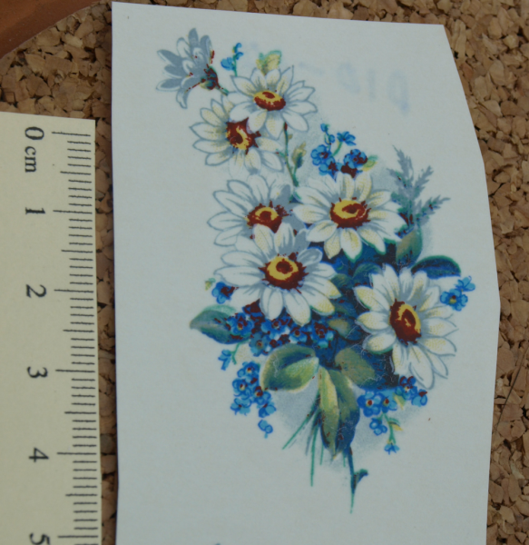 Blue Bunch Daisy Ceramic Waterslide Decals D10-14