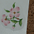 Pink  Flowers Ceramic Waterslide Decal (D10-1)