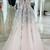 Gorgeous Appliqued Graduation Dress with Illusion V Inset